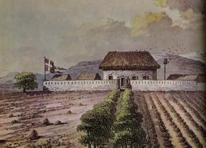 Plantasjen «Frederiksted» i Dansk Guinea omfattet tre kornplantasjer og ca. 5000 bomulls-busker.
