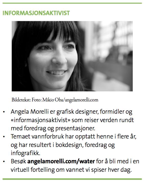2014-06-morelli-grafikk-06